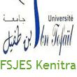 FSJES Kenitra