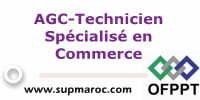 ISTA Technicien Spécialisé en Commerce