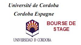 BOURSE DE STAGE