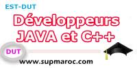 Developpeurs JAVA et C
