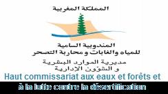 Haut commissariat aux eaux et forêts et à la lutte contre la désertification