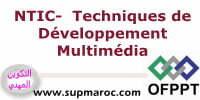 ISTA Techniques de Développement Multimédia