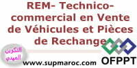 ISTA Technico-commercial en Vente de Véhicules et Pièces de Rechange
