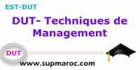 Techniques de Management