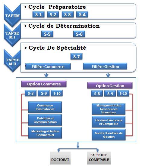 diagramme encg