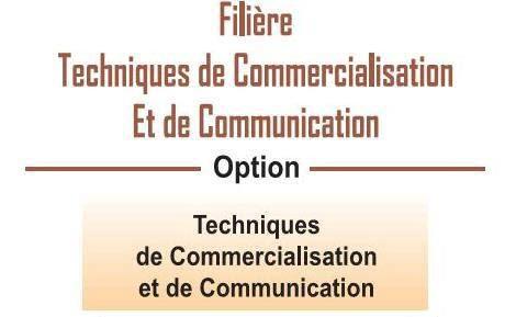 EST Filière Techniques de Commercialisation et de Communication (TCC)