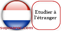 Etude à l'étranger Les Pays-Bas