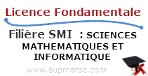 Licence Fondamentale SMI SCIENCES MATHEMATIQUES ET INFORMATIQUE
