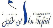 Université in Tofail Kenitra